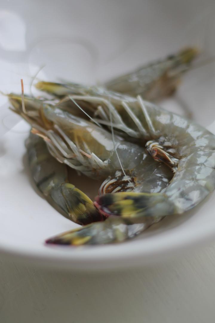 Jess – king prawns